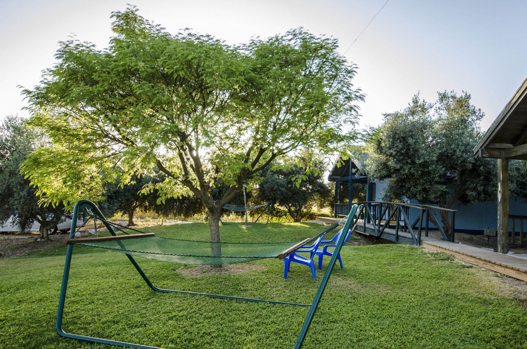 חצר בכרם הזיתים